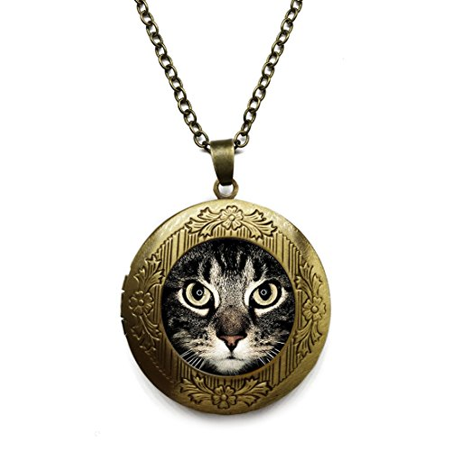 Vintage Bronze Tone Locket Picture Pendant Necklace Lucky Cat Eye Steampunk Pet Glass Dome Cabochon Included Free Brass Chain Gifts -
