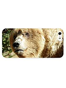 3d Full Wrap Case For Iphone 5/5S Cover Animal Bear53
