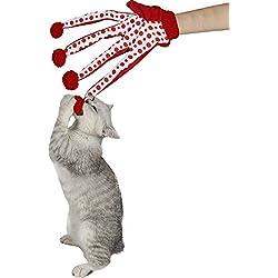 Pawz Road Cat Teaser Glove Pet Toy