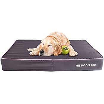 Amazon.com : The Dog's Bed Orthopedic Dog Bed XL Grey/Pink