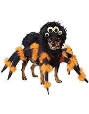 California Costumes Spider Pup Dog Costumes, Pet, Black/Orange, Large