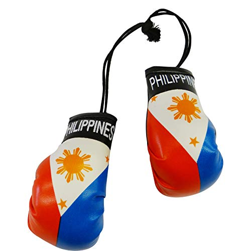 Philippines Country Flag Mini Boxing Gloves..New