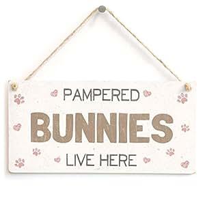 Owen Cocker mimar Bunnies vivir aquí–Cute Fun Home Accessory regalo muestra para propietarios de conejo