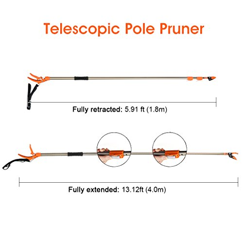 Finether Telescopic Pole Saw Long Reach Pole Pruner Lightweight Tree Trimmer with Bypass Pruner, Saw Blade, Guide Rod |Work Gloves for Free | Extends from 5.91 to 13.12 ft by Finether (Image #3)