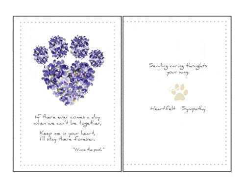 amazon com dog sympathy stars pet sympathy card health personal care