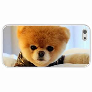 Apple iPhone 5 5S Cases Customized Gifts Boo Dog Animals White Hard PC Case