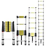 GreenWise ® 12.5 FT Portable Aluminum Telescoping Extension Ladder