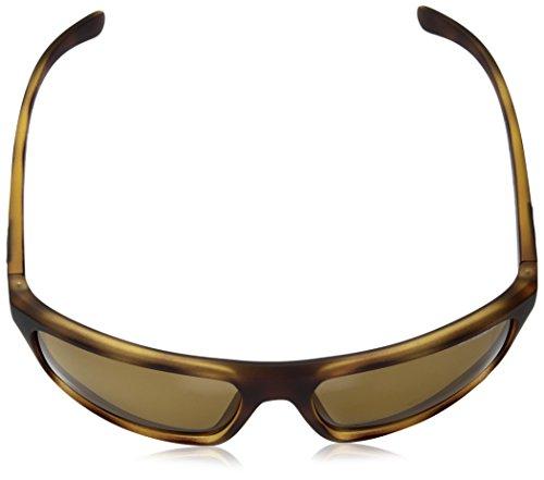 Rubber SANDBANK Sonnenbrille Arnette Havana AN4229 Tq8BO
