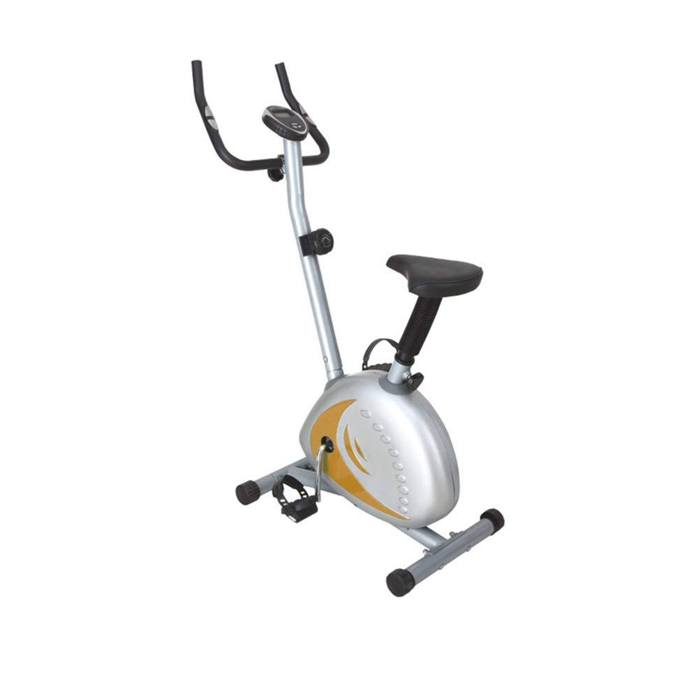 スピニングバイク室内エアロビックエクササイズバイクフィットネスとAbトレーナーFバイクFライダーサイクルフィットネスカーディオワークアウトマシン   B07MDN5CT8