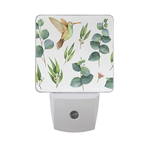 Naanle Set Of 2 Hummingbird Hand Painted Green Eucalyptus Leaves Floral Flower On White Auto Sensor LED Dusk To Dawn Night Light Plug In Indoor for (Hand Painted Floral Plug)
