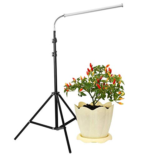 (Floor Lamp LED Grow Light, 30W Floor Stand Growing Light with Flexible Gooseneck, Warmwhite and Red Light Full Spectrum for Indoor Plants, Seedling, Hydroponic, Basement Plants to Survive Cold )