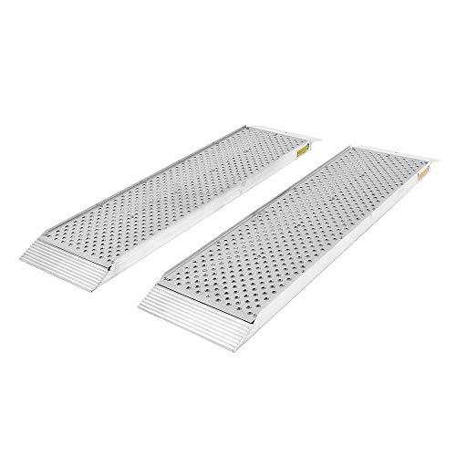 Guardian S-4812-1500-P Dual Runner Shed Ramps with Punch Plate Surface-12 Wide, 4' Long