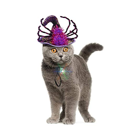Zelda Cat Costume (IPOW Cat Dog Halloween Costumes Hats Pet Costumes for Small Dogs Super Funny Cute Cat Dog Spider Costume Cat Witch Hat with an Individual Flashing LED Light Attractive Small Dog)