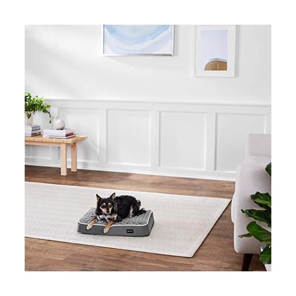 AmazonBasics Ergonomic Foam Pet Bed For Cats or Dogs 2