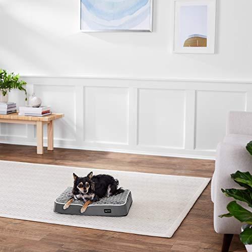 AmazonBasics Ergonomic Foam Pet Dog Bed – 15 x 20 Inches, Grey