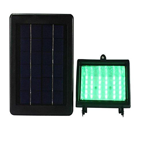 Village Green Solar Lighting in US - 7