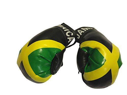 Flag Mini Small Boxing Gloves to Hang Over Car Automobile Mirror – Americas (Country: Guyana)