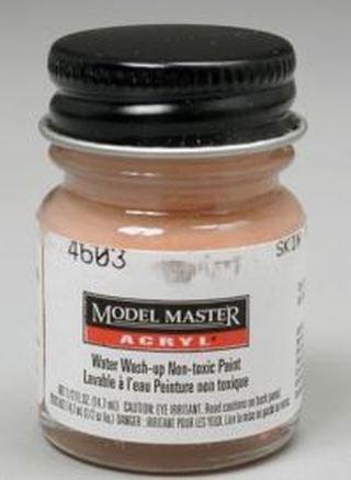 Skin Tone Warm Tint Testors Acrylic Plastic Model Paint by Testor - Tone Skin Warm