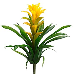 "14"" Silk Bromeliad Plant Flower Bush -Yellow/Green (Pack of 12) 93"