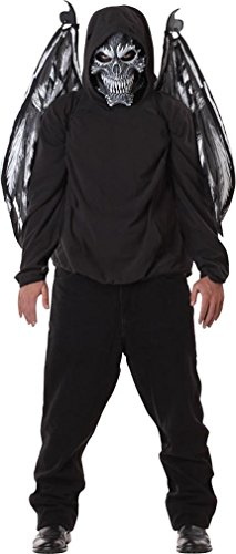 California Costume Fallen Angel Mask and Wings Halloween Party Scarry Adult +eBook