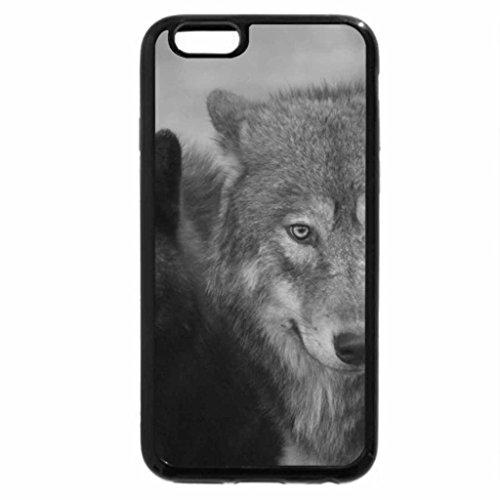 iPhone 6S Plus Case, iPhone 6 Plus Case (Black & White) - two wolves