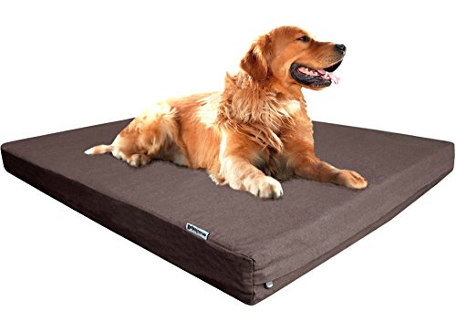 Dogbed4less Extra Large Premium Orthopedic Memory Foam Dog Bed with Durable Brown Denim Cover, Waterproof Liner and Extra Pet Bed Case, Gel Cooling 47X29X4 Pad by Dogbed4less