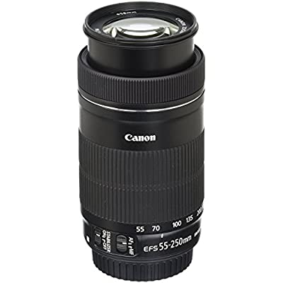 canon-ef-s-55-250mm-f4-56-is-stm