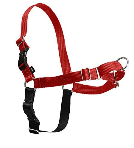 easy walk harness petite small - 4