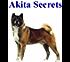 Akita Secrets: How to Raise a Happy and Healthy Akita Dog