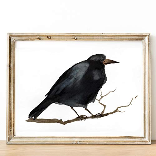 (Raven Watercolor PRINT art Crow Bird print. Fine art Animal Woodland Prints Forest wildlife Home decor bird black raven crow art print 8.25 x 11.75 inches Unframed )