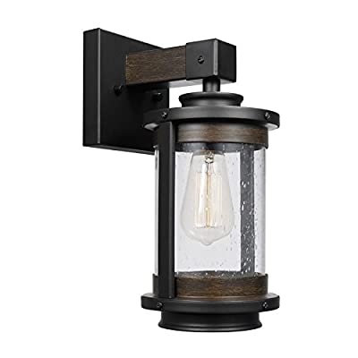 Globe Electric 1-Light Wall Sconce
