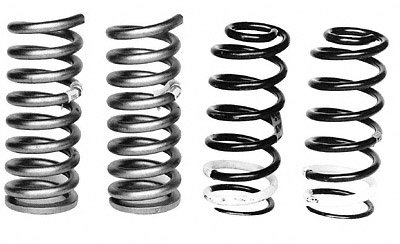 Ford Mustang Springs (Ford Racing M5300C Front/Rear Spring Kit For 79-00 Mustang)