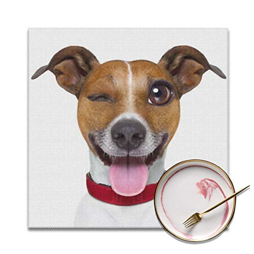 Emoticon Tongue Sticking Out (BBD Placemats for Kids Washable Easy Wipe Clean for Dinner Table Heat-resistand Polyester Plastic Table Mats Set of 4, 12 x 12 Inch Funny Terrier Emoticon Sticking Out The)