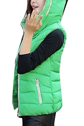 Ladies Quilted Vest Full Zip (WANSHIYISHE Women's Quilted Comfortable Padded Full Zip Puffer Vest Outwear Green US S)