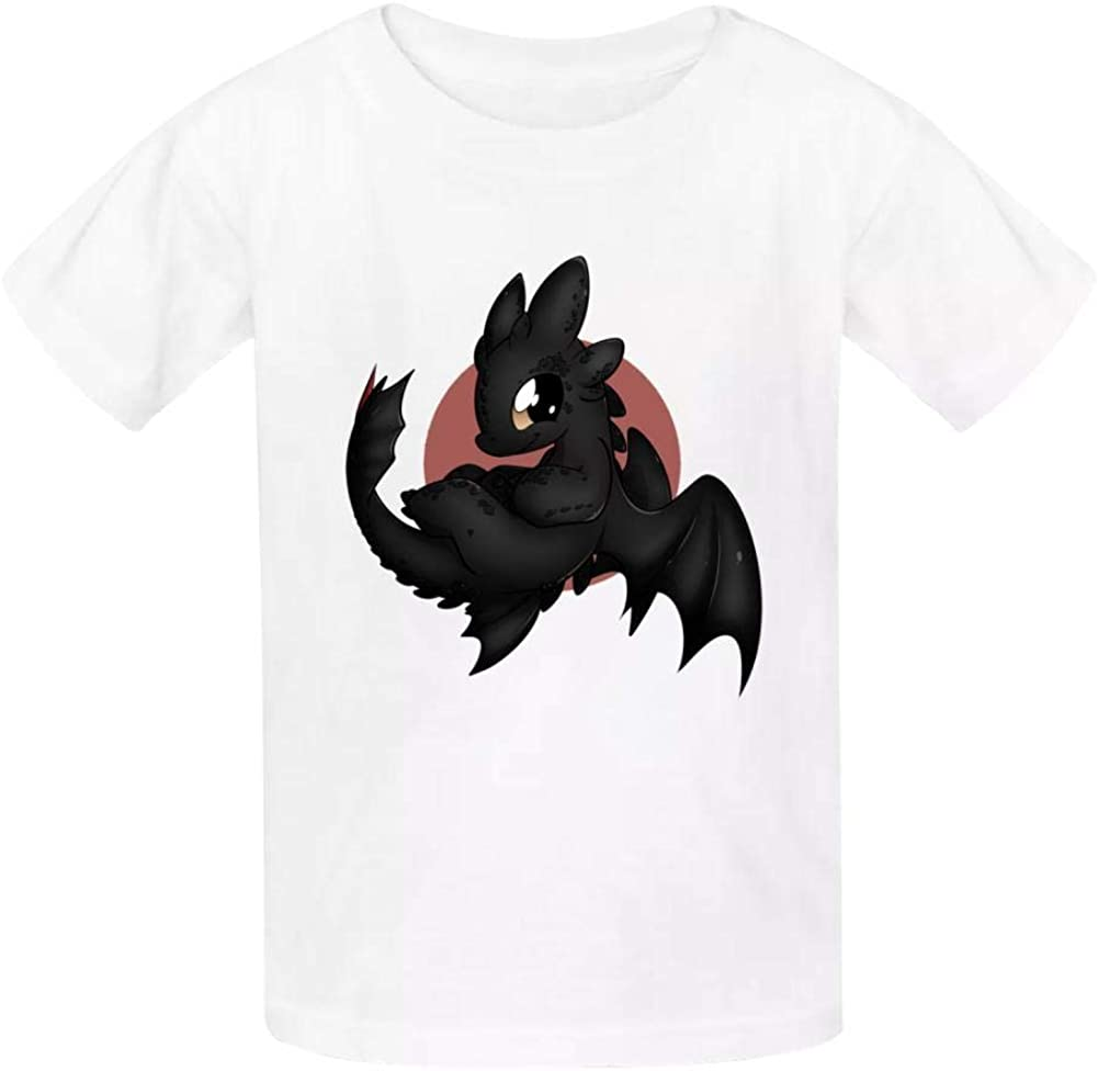 Kid//Youth Night Fury Toothless Dragon T-Shirts 3D Short Sleeve Tees for Girls Boys
