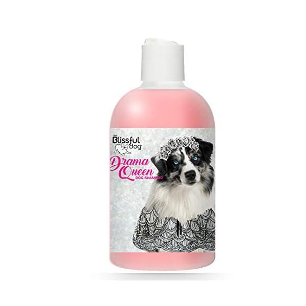 The Blissful Dog Drama Queen Dog Shampoo 1