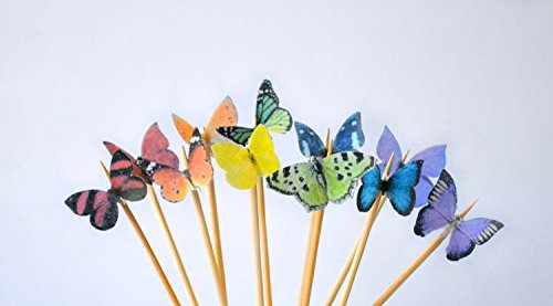 Edible Butterflies © - Mini Assorted Rainbow Set of 48 - Cake and Cupcake Toppers, Decoration by Sugar Robot Inc.