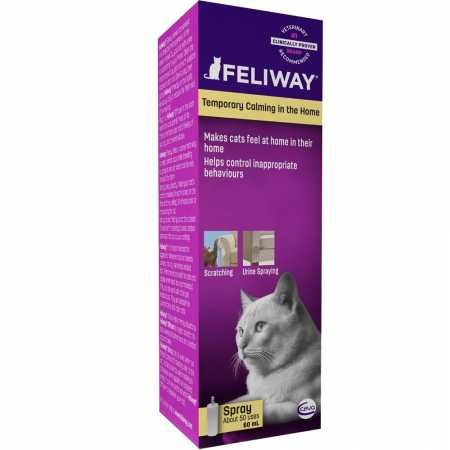 Buy calming products for cats