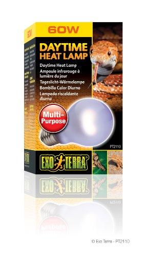 Exo Terra Sun-Glo Neodymium A19 Lamp, 60-Watt