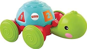 Empurra Tartaruga Fisher Price, Mattel, Verde
