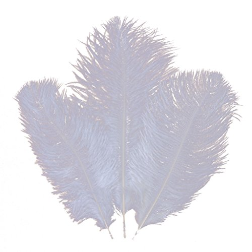 Ostrich Feather,Hgshow 20pcs Feathers 8-10inch(20-25cm) for Home Wedding Decor... White -