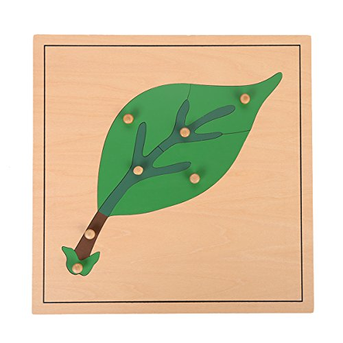 LEADER JOY Montessori Nature Materials Leaf Puzzle for Early Preschool Learning Toy by Leader