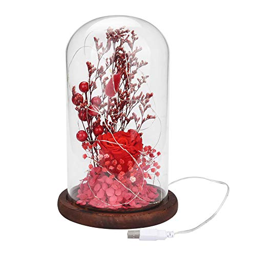 Boomnow Glass Cover Dried Flowers Micro Landscape Eternal Flower Creative Jewelry, Decoration Light, Beautiful Romantic, Red, US Stock