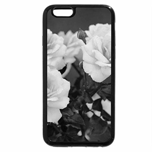 iPhone 6S Case, iPhone 6 Case (Black & White) - Creamy and Dreamy Roses