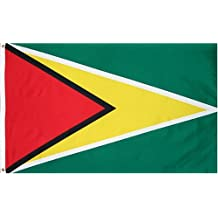 Guyana National Country Flag - 3 foot by 5 foot Polyester (New)