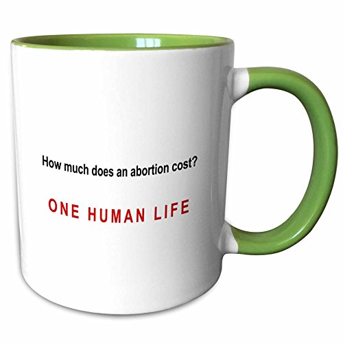 3dRose Mark Andrews ZeGear Spiritual - How Much Does Abortion Cost - 11oz Two-Tone Green Mug (mug_60812_7)