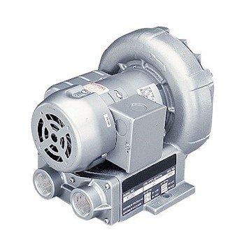 Gast R4110-2 Regenerative Blower, Single Phase; 74 cfm at 50 Hz, 92 cfm at 60 Hz