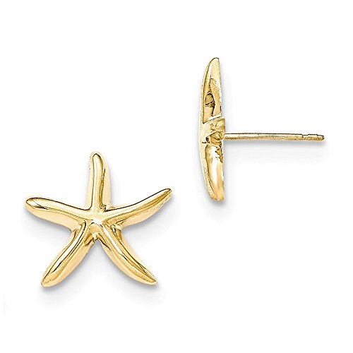 Gold Starfish Earrings (14k Yellow Gold Polished Starfish Post Earrings 15x15 mm)