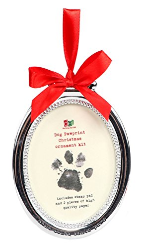 Pet Holiday Ornament Pawprint Stamp Kit