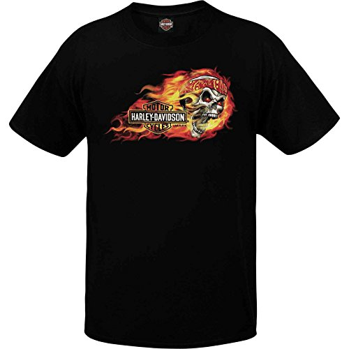 Harley Davidson Sales - 5